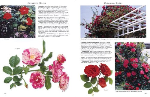 Best Rose Guide A Comprehensive Selection  2004 9781552978443 Front Cover