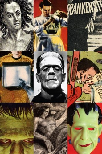 Frankenstein A Cultural History  2007 edition cover