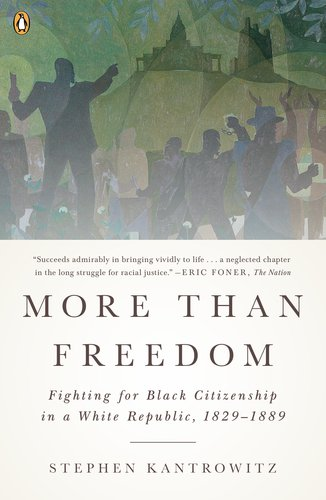 More Than Freedom Fighting for Black Citizenship in a White Republic, 1829-1889 N/A edition cover