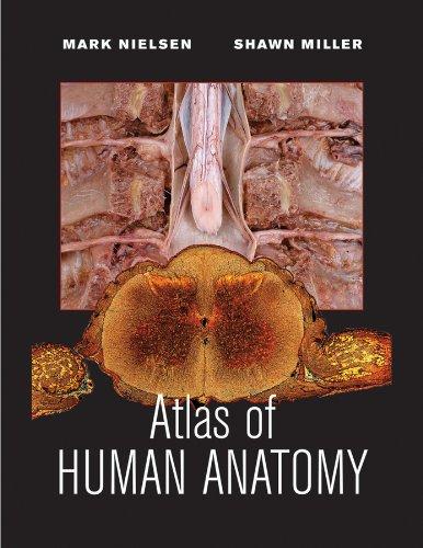 Atlas of Human Anatomy   2011 edition cover