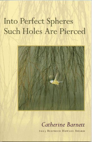 Into Perfect Spheres Such Holes Are Pierced   2004 edition cover