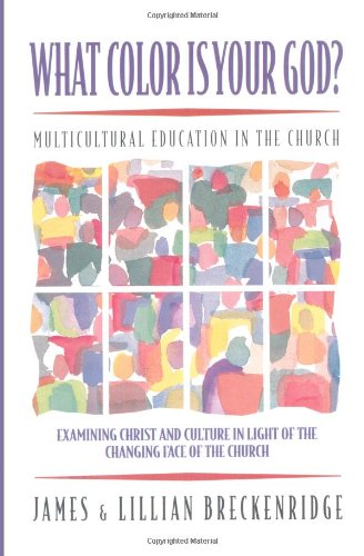 What Color Is Your God? Multicultural Education in the Church N/A edition cover