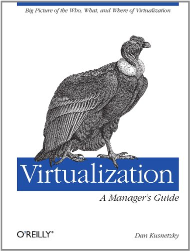 Virtualization - A Manager's Guide Big Picture of the Who, What, and Where of Virtualization  2011 edition cover