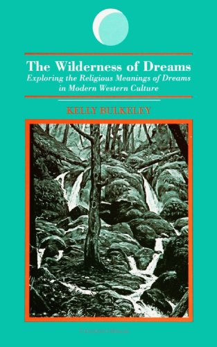 Wilderness of Dreams Exploring the Religious Meanings of Dreams in Modern Western Culture N/A edition cover