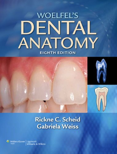 Woelfel's Dental Anatomy Its Relevance to Dentistry 8th 2011 (Revised) edition cover