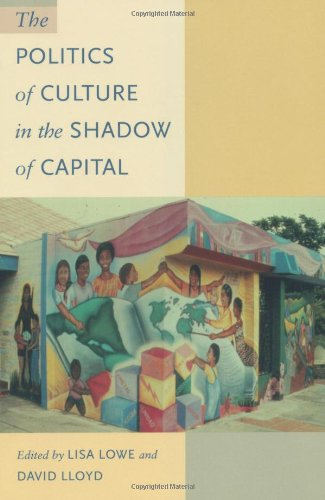 Politics of Culture in the Shadow of Capital   1997 edition cover