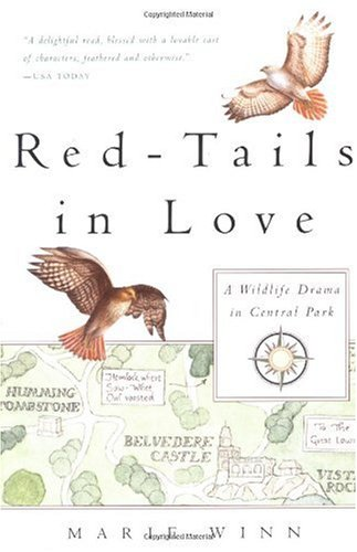 Red-Tails in Love PALE MALE's STORY--A True Wildlife Drama in Central Park  2005 edition cover