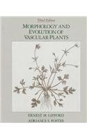 Morphology and Evolution of Vascular Plants 3rd edition cover