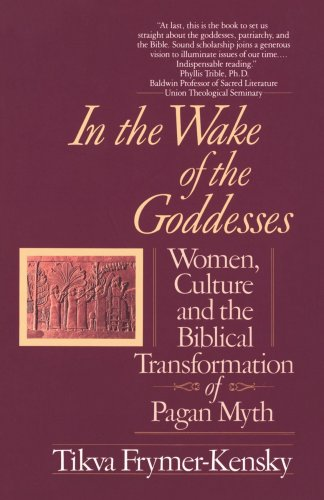 In the Wake of the Goddesses Women, Culture and the Biblical Transformation of Pagan Myth N/A edition cover