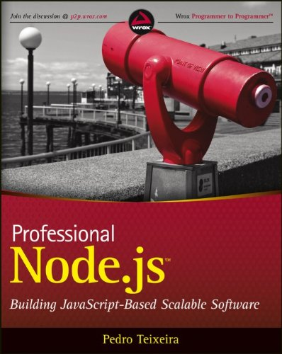 Professional Node. Js Building Javascript Based Scalable Software  2013 edition cover