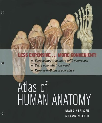 Atlas of Human Anatomy   2011 edition cover