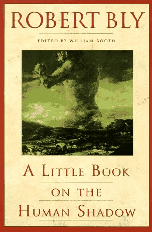 Little Book on the Human Shadow  N/A edition cover