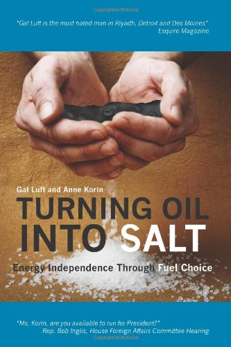 Turning Oil into Salt Energy Independence Through Fuel Choice N/A edition cover