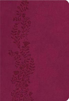 KJV Ultraslim Bible   2012 9781401675479 Front Cover
