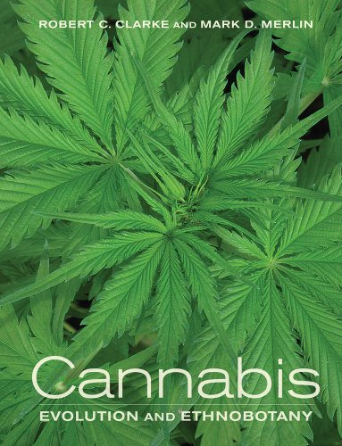 Cannabis Evolution and Ethnobotany  2013 edition cover