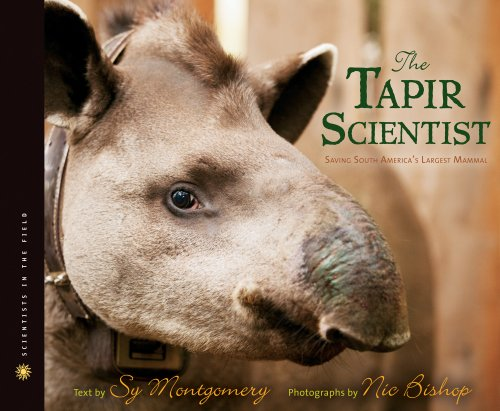 Tapir Scientist Saving South America's Largest Mammal  2013 9780547815480 Front Cover