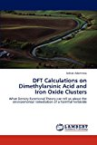 Dft Calculations on Dimethylarsinic Acid and Iron Oxide Clusters  N/A 9783838370484 Front Cover