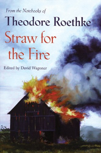 Straw for the Fire From the Notebooks of Theodore Roethke 2nd 2006 edition cover