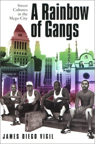 Rainbow of Gangs Street Cultures in the Mega-City  2002 edition cover