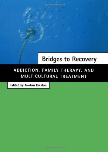 Bridges to Recovery Addiction, Family Therapy, and Multicultural Treatment  2000 9780684846491 Front Cover