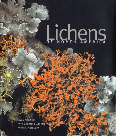 Lichens of North America   2001 9780300082494 Front Cover