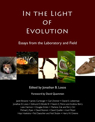 In the Light of Evolution Essays from the Laboratory and Field 2nd 2011 edition cover