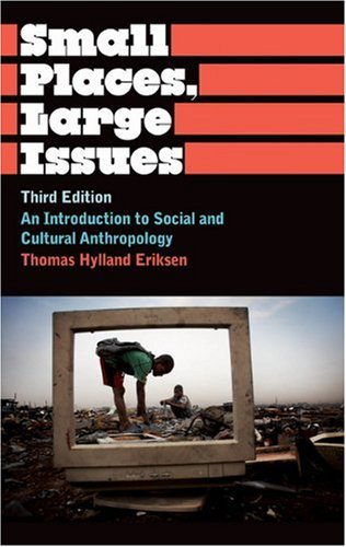 Small Places, Large Issues An Introduction to Social and Cultural Anthropology 3rd 2010 (Revised) edition cover