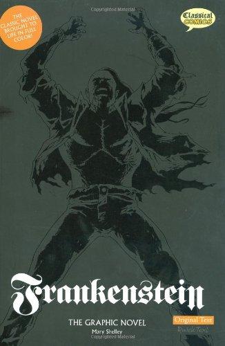 Frankenstein   2008 edition cover