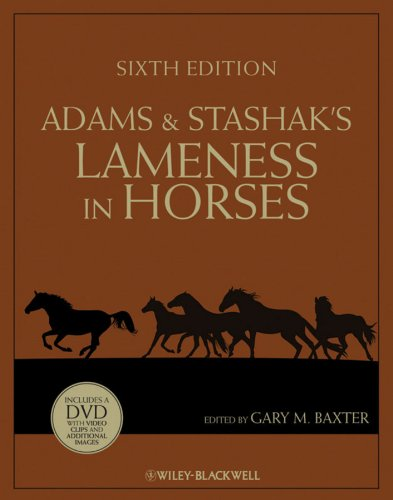 Adams and Stashak's Lameness in Horses  6th 2011 9780813815497 Front Cover