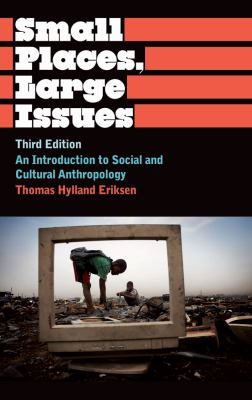 Small Places, Large Issues An Introduction to Social and Cultural Anthropology, Third Edition 3rd 2010 (Revised) 9780745330501 Front Cover
