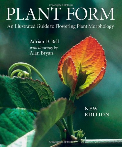 Plant Form An Illustrated Guide to Flowering Plant Morphology 2nd 2008 edition cover
