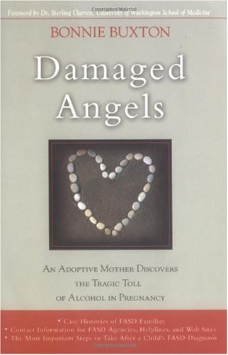 Damaged Angels An Adoptive Mother Discovers the Tragic Toll of Alcohol in Pregnancy N/A 9780786715503 Front Cover