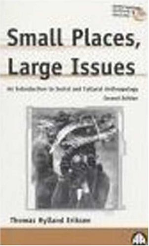 Small Places, Large Issues : An Introduction to Social and Cultural Anthropology 1st 1995 9780745309514 Front Cover
