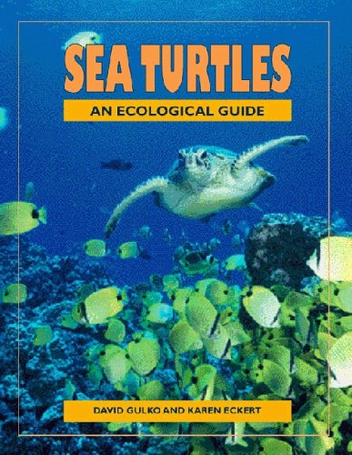 Sea Turtles An Ecological Guide  2004 9781566476515 Front Cover