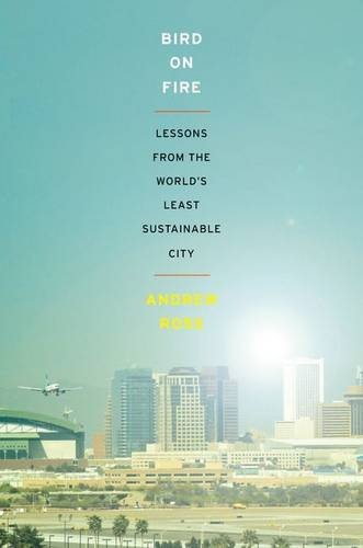 Bird on Fire Lessons from the World's Least Sustainable City  2013 edition cover
