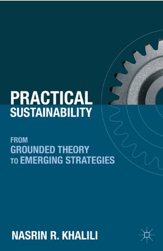 Practical Sustainability From Grounded Theory to Emerging Strategies  2011 9780230104525 Front Cover