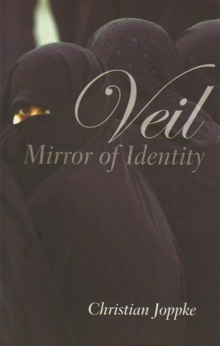 Veil Mirror of Identity  2009 edition cover
