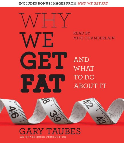Why We Get Fat: And What to Do About It  2010 edition cover