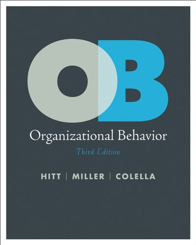 Organizational Behavior A Strategic Approach 3rd 2011 edition cover