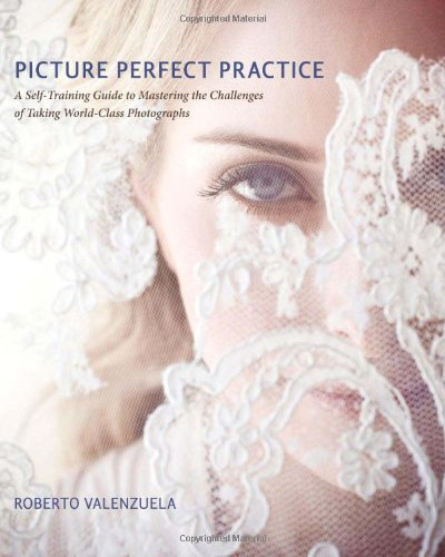 Picture Perfect Practice A Self-Training Guide to Mastering the Challenges of Taking World-Class Photographs  2012 9780321803535 Front Cover