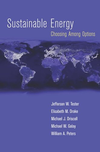 Sustainable Energy Choosing among Options  2005 9780262201537 Front Cover