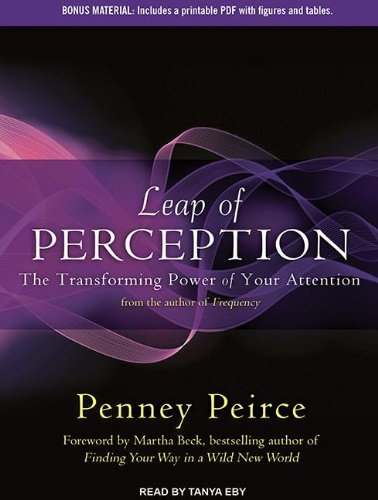Leap of Perception: The Transforming Power of Your Attention; Library Edition  2013 edition cover