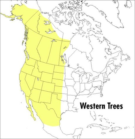 Field Guide to Western Trees Western United States and Canada 2nd 1998 edition cover