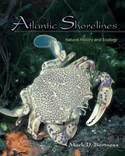 Atlantic Shorelines Natural History and Ecology  2007 edition cover