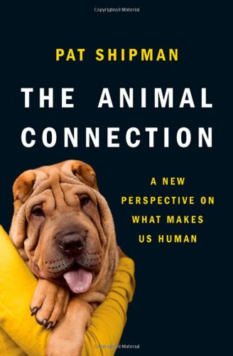 Animal Connection A New Perspective on What Makes Us Human  2011 edition cover