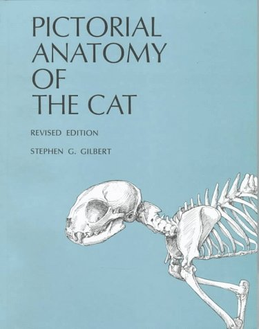 Pictorial Anatomy of the Cat  Revised edition cover