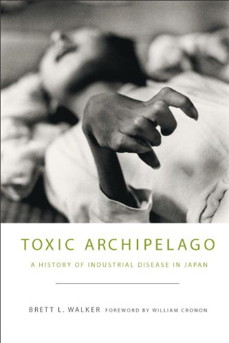 Toxic Archipelago A History of Industrial Disease in Japan  2010 edition cover