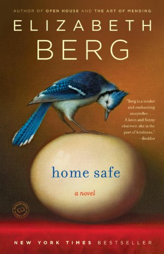 Home Safe   2009 edition cover