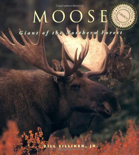 Moose Giants of the Northern Forest  1998 9781552092552 Front Cover
