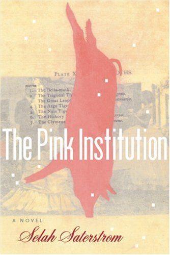 Pink Institution   2004 edition cover